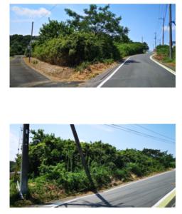 現地の写真.png