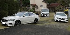 白い車多いな.jpg